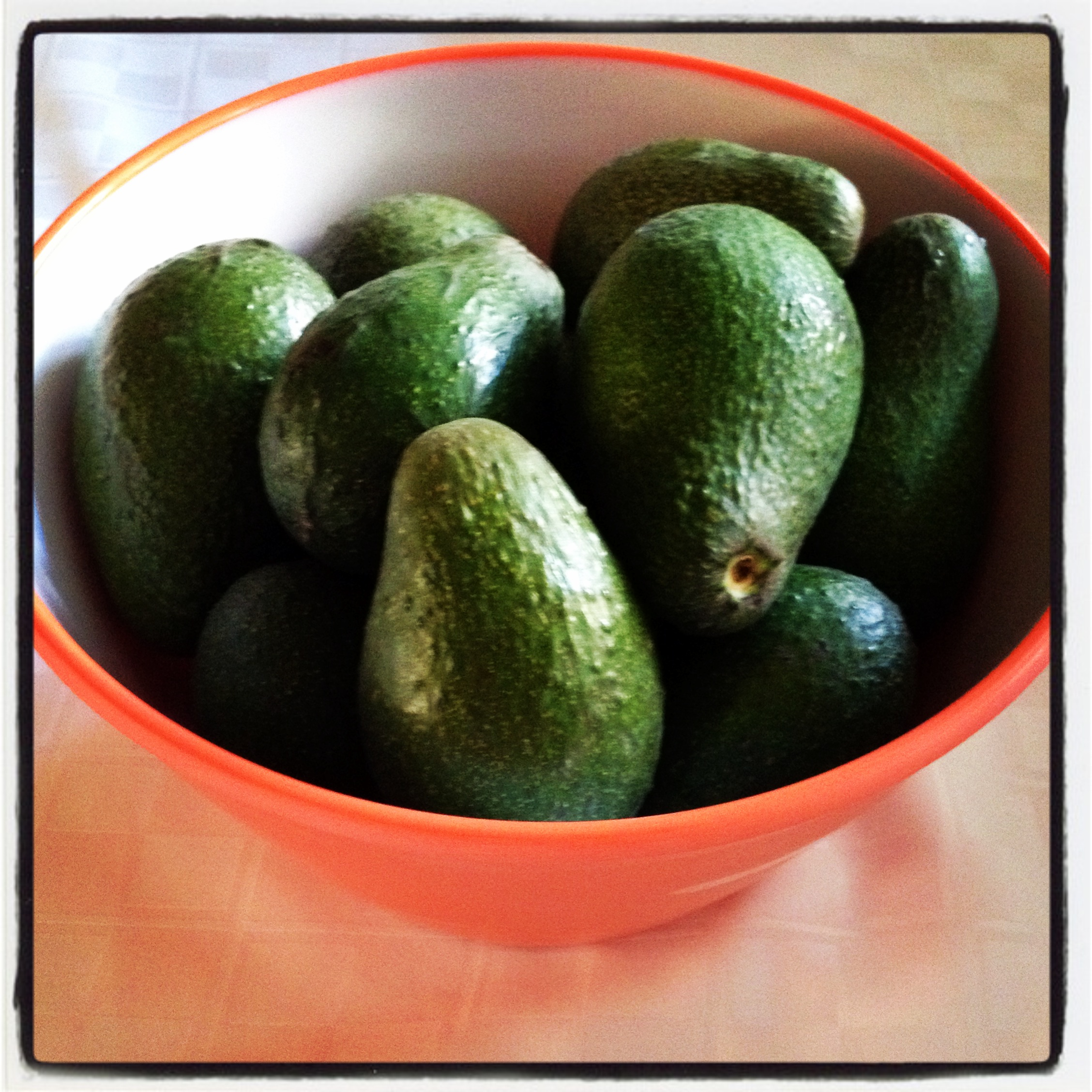 Avocado Bowl | Girl on the Move Blog