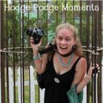 Hodge Podge Moments