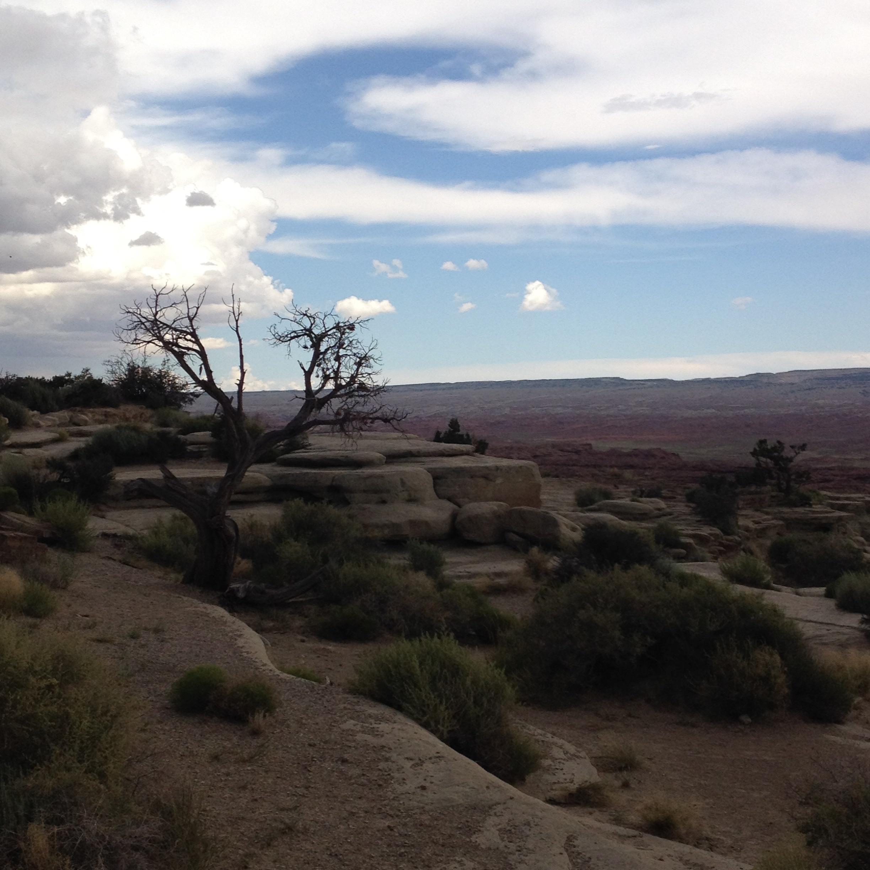 Road Trip through Utah and Colorado